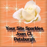 sparkle award